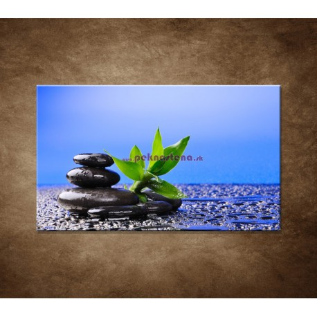 Obraz na stenu - Bambusový výhonok na kameni