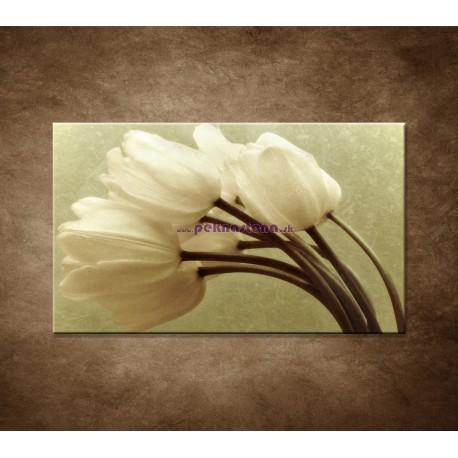 Obraz na stenu - Kytica tulipánov