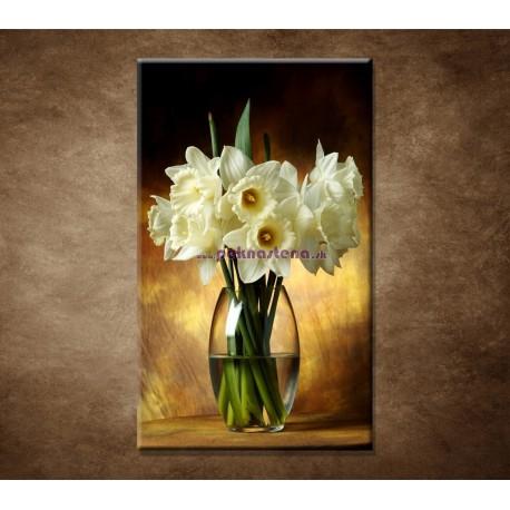 Obraz na stenu - Narcisy