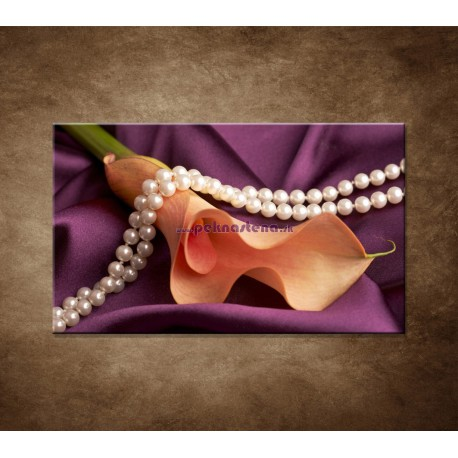 Obraz na stenu - Kala a perly