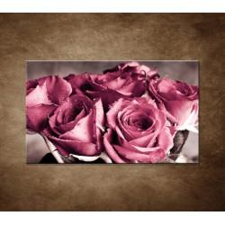 Obraz - Kytica ruží