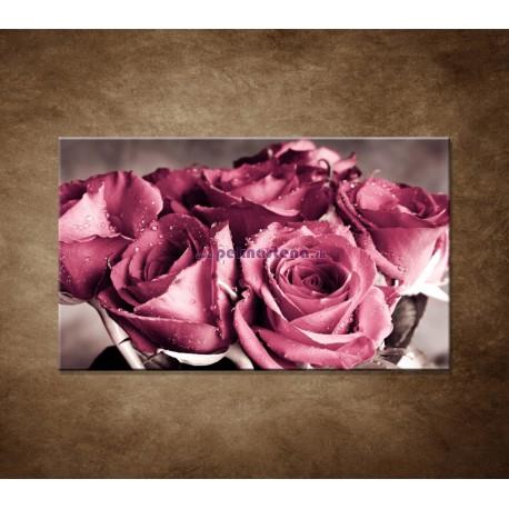 Obraz na stenu - Kytica ruží