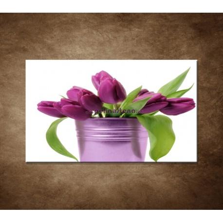 Obraz na stenu - Svieže tulipány