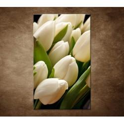 Kytica tulipánov - detail
