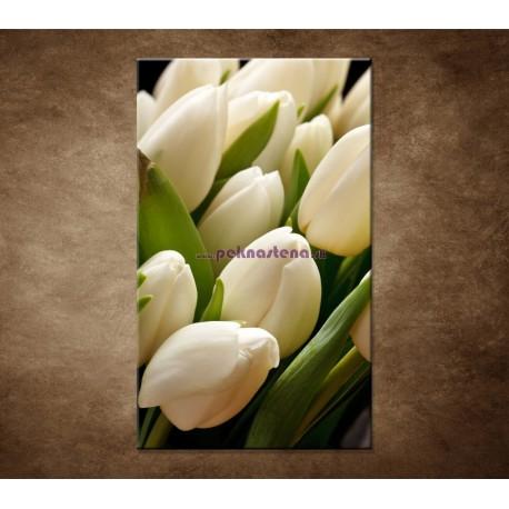 Obraz na stenu - Kytica tulipánov - detail