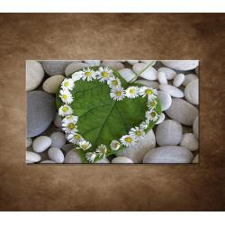 Obraz - Srdce z kvetov