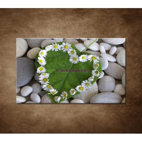 Obraz na stenu - Srdce z kvetov