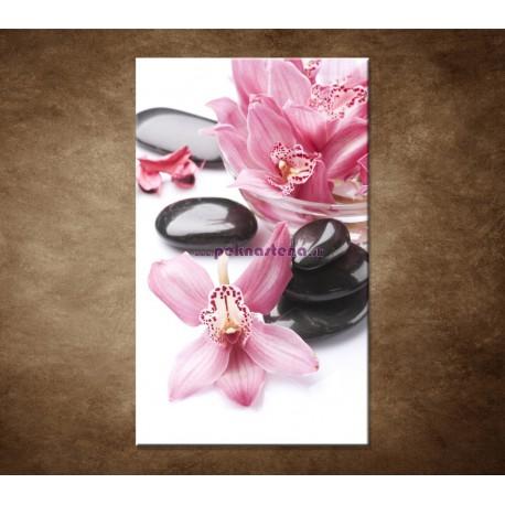 Obrazy na stenu - Kamene a kvety na bielom pozadí