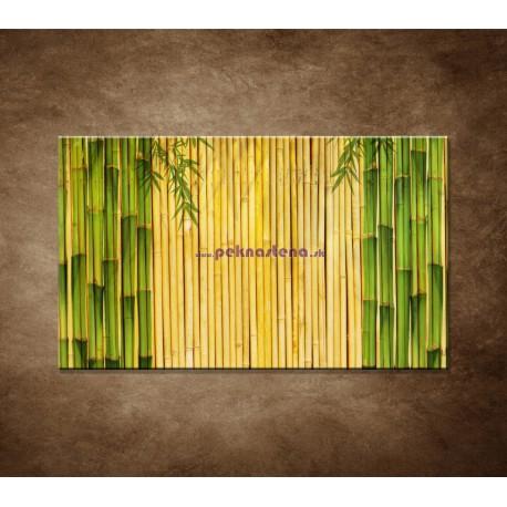 Obrazy na stenu - Bambusové stonky