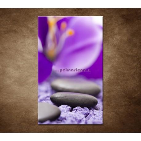 Obrazy na stenu - Kamene s fialovým kvetom