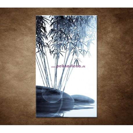 Obrazy na stenu - Bambus a kamene na vode