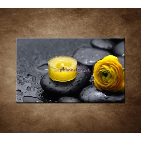 Obraz na stenu - Žltá sviečka a kvet