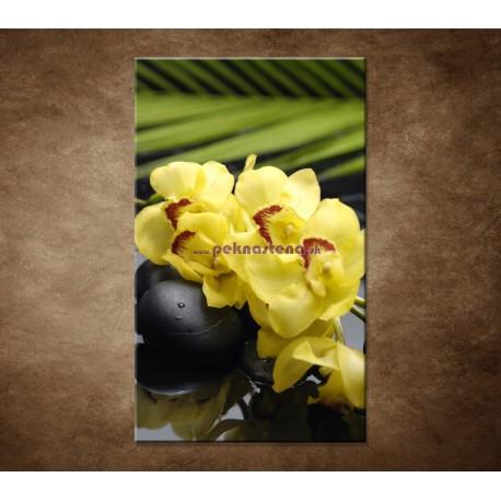 Obrazy na stenu - Žltá orchidea s kameňmi