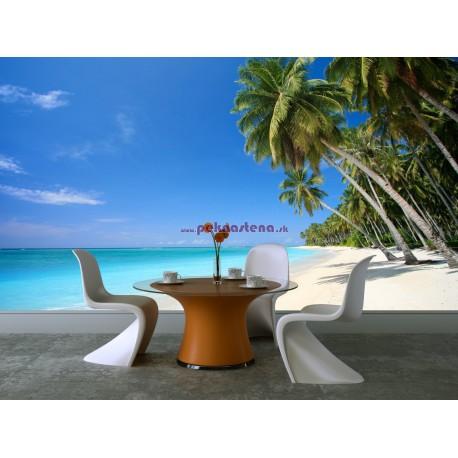 Fototapety - Pláž s palmami