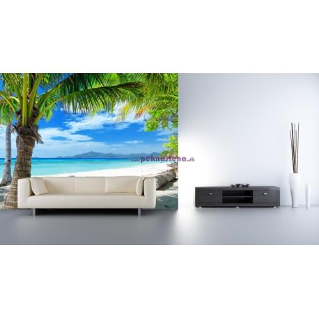 Fototapety - Pláž s palmou