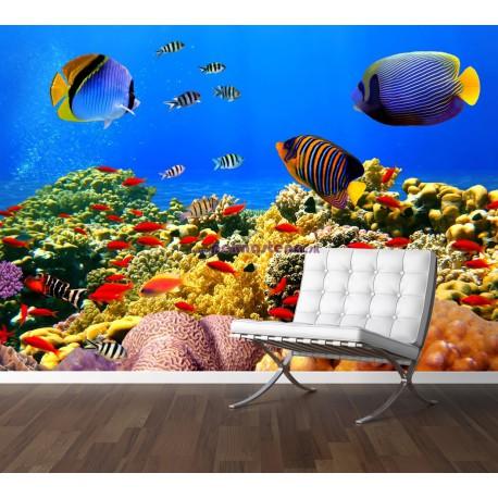 Fototapety - Podmorský svet