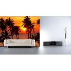 Fototapety - Západ slnka s palmami