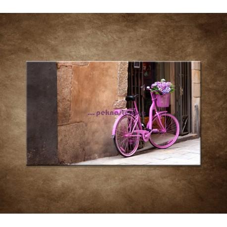 Obraz na stenu - Ružový bicykel