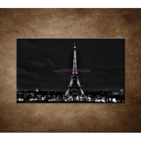 Obraz na stenu - Čiernobiela Eifelovka