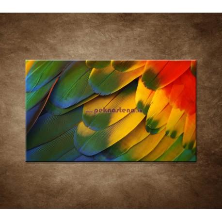 Obrazy na stenu - Farebné perie