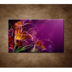 Obraz - Fialové kvety