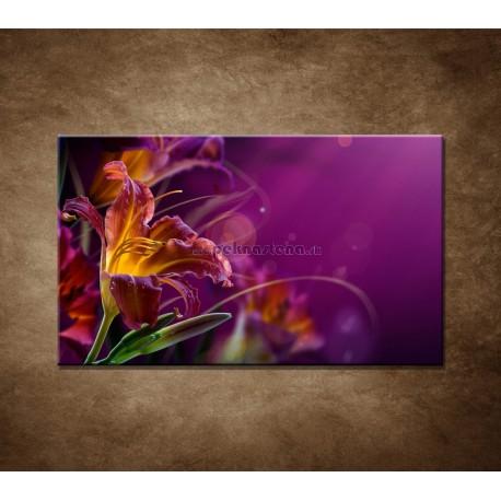 Obrazy na stenu - Fialové kvety