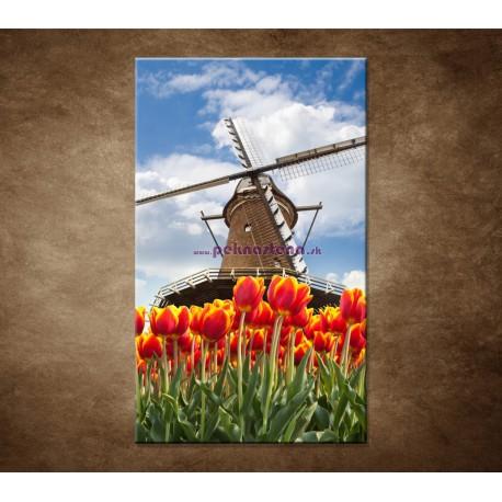 Obrazy na stenu - Mlyn s tulipánmi