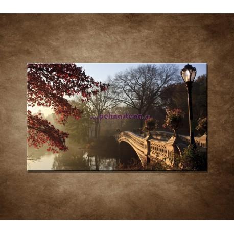 Obrazy na stenu - Most v parku