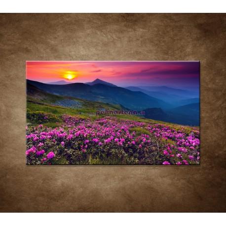Obrazy na stenu - Západ slnka 2