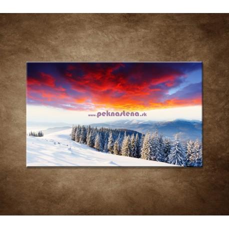 Obrazy na stenu - Zimná príroda