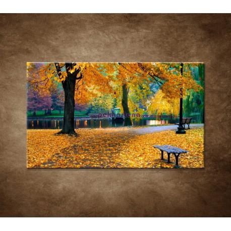 Obrazy na stenu - Bostonský park