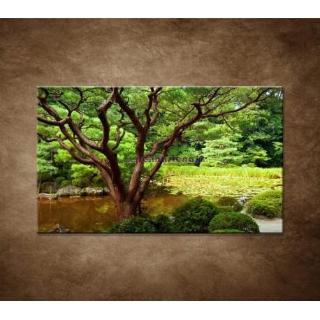 Obrazy na stenu - Japonská záhrada