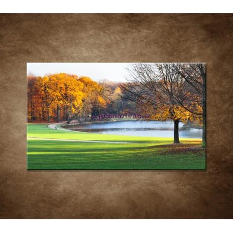 Obrazy na stenu - Park na jeseň