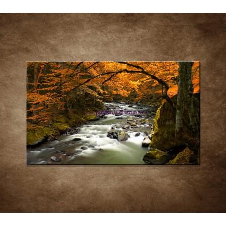 Obrazy na stenu - Jesenná krajina
