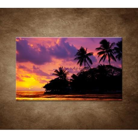 Obrazy na stenu - Farebná príroda