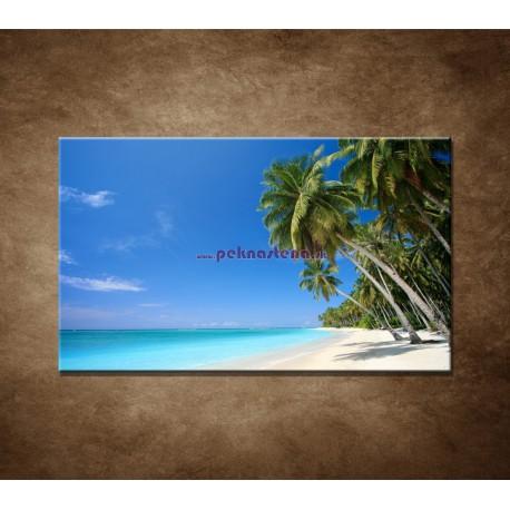 Obrazy na stenu - Pláž s palmami