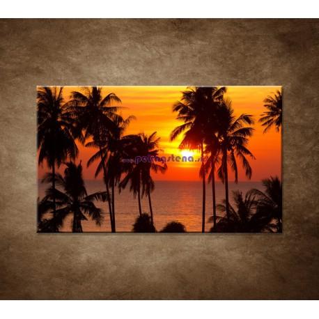 Obrazy na stenu - Západ slnka s palmami