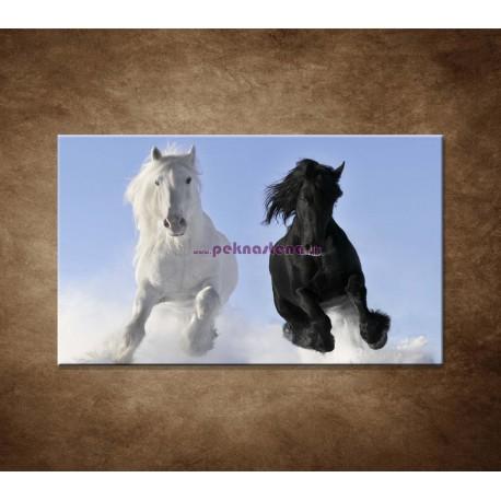Obrazy na stenu - Párik koní