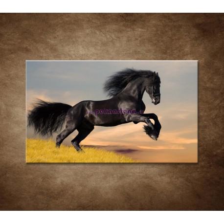 Obrazy na stenu - Skákajúci kôň