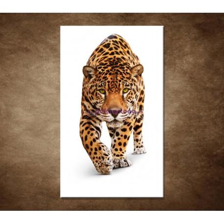 Obrazy na stenu - Jaguár