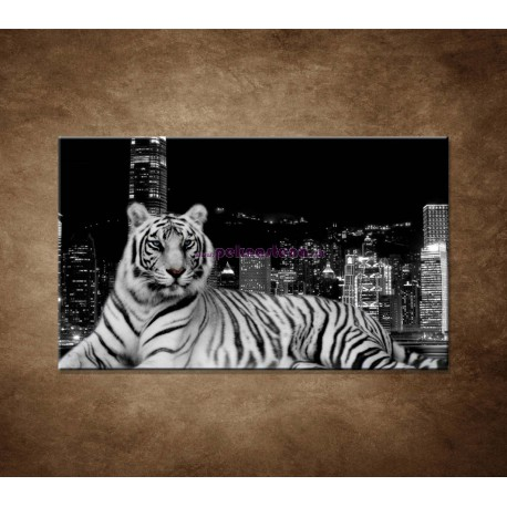 Obrazy na stenu - Mestský tiger
