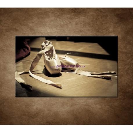 Obrazy na stenu - Baletná obuv