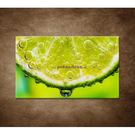 Obrazy na stenu - Plátok citróna