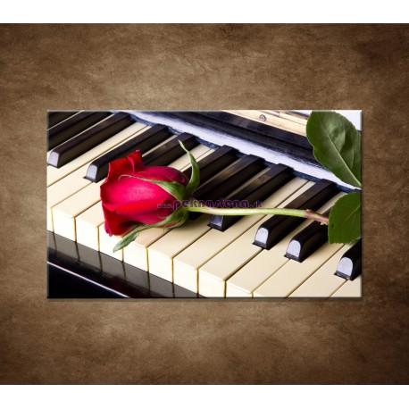 Obrazy na stenu - Ruža na klavíri