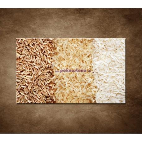 Obrazy na stenu - Tri druhy ryže