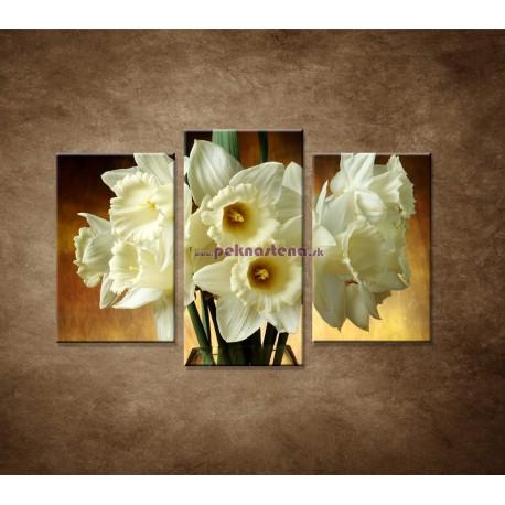 Obrazy na stenu - Narcisy - 3dielny 75x50cm