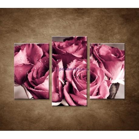 Obrazy na stenu - Kytica ruží - 3dielny 75x50cm