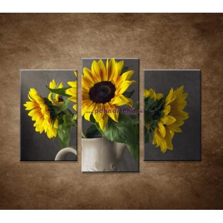 Obrazy na stenu - Slnečnica vo váze - 3dielny 75x50cm