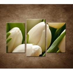 Kytica tulipánov - detail -  3dielny 75x50cm