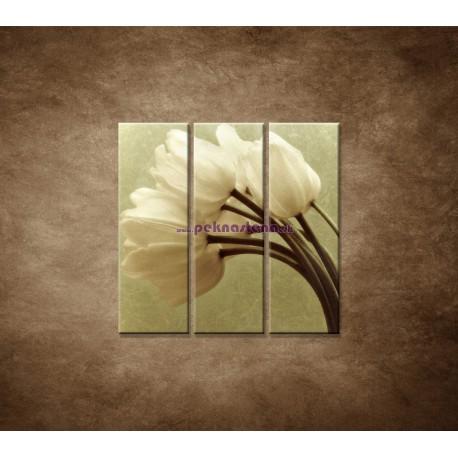 Obrazy na stenu - Kytica tulipánov - 3dielny 90x90cm